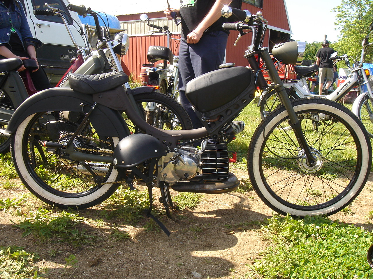1000+ images about Little Lou's Pinto bobber on Pinterest ...  1000+ images ab...