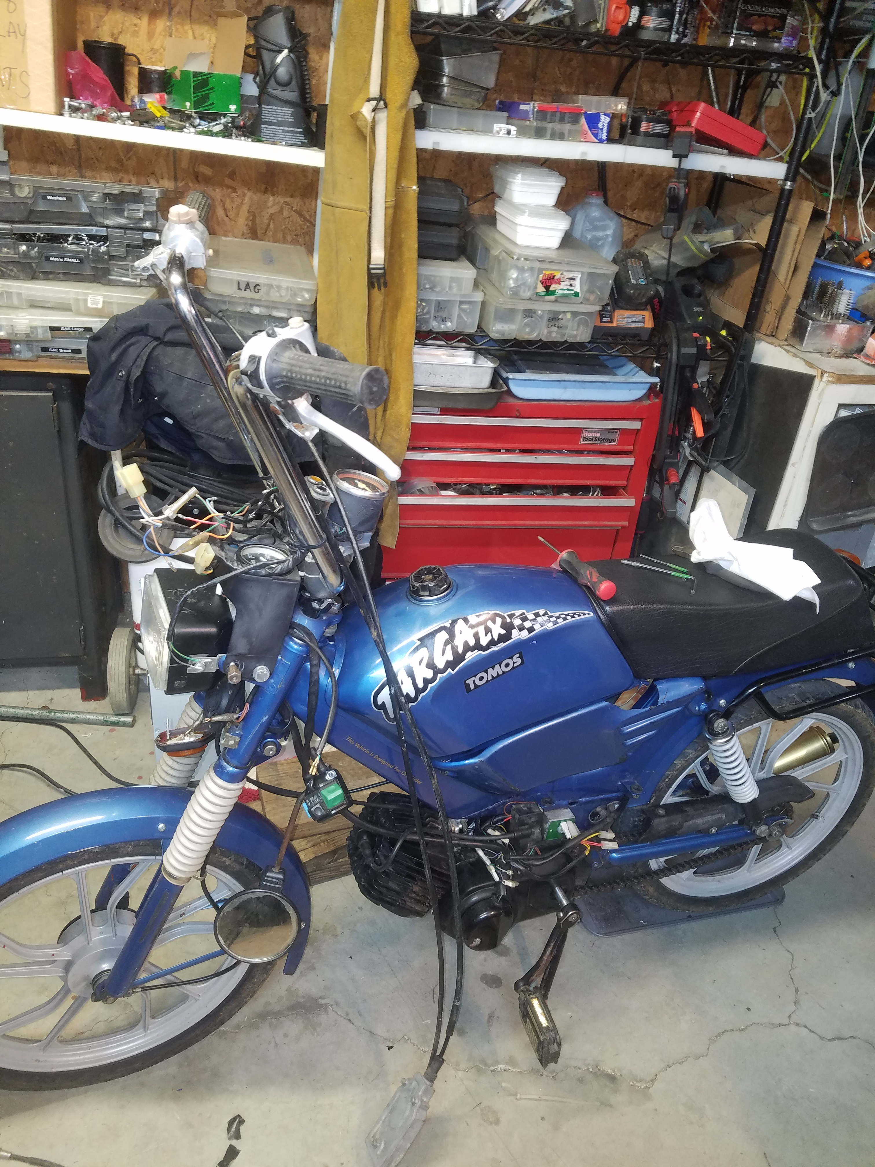 Moped virgin here   Be gentle   New to me 2000 Tomos Targa