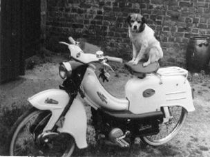1958 Flandria, with dog