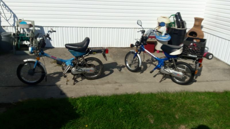 Fs  1982 And 1983 Honda Express Nc50 And A Tomos Project