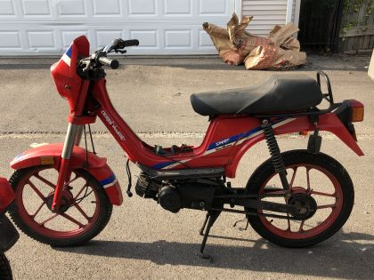 Derbi Variant, Red
