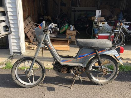 Derbi Variant, Gray