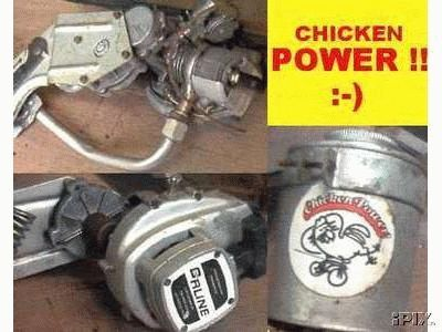 Chicken Power