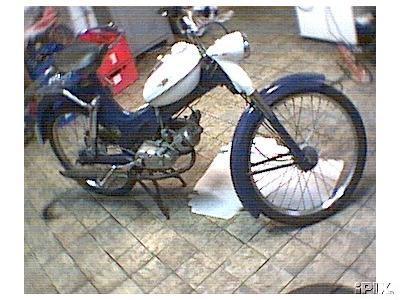 1974 Puch MF25 (Blue and White)