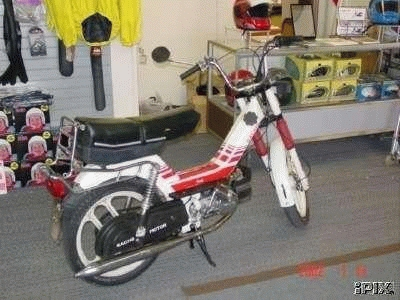 1987 Sachs Saxy (White and Red)