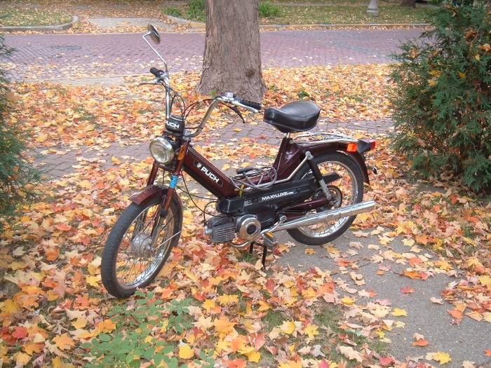 1979 Puch Maxi Luxe (Maroon)
