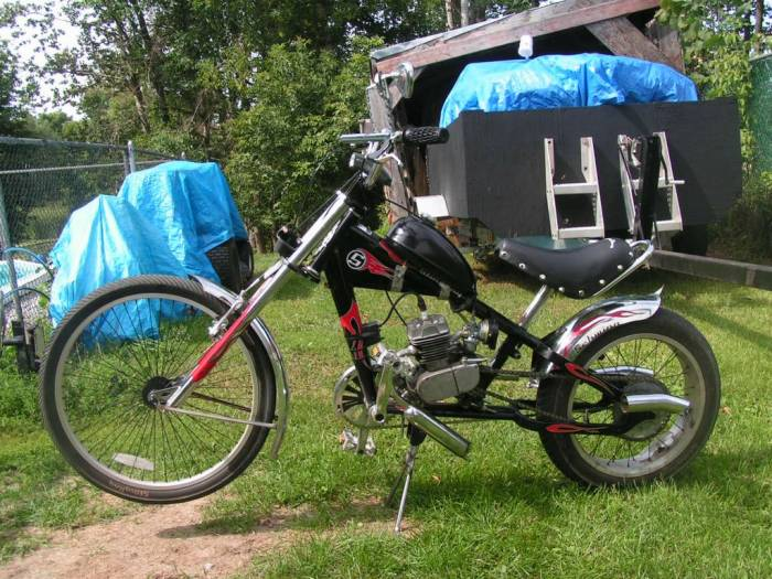 2004  (Custom Chopper)