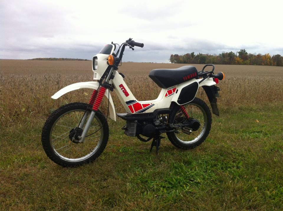 SG50 Sting - Moped Wiki