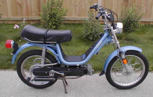 Electric Bike With Rear Seat